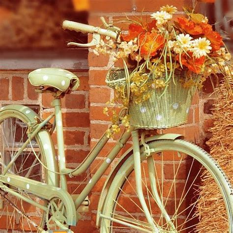 bicycle photograph shabby chic orange autumn