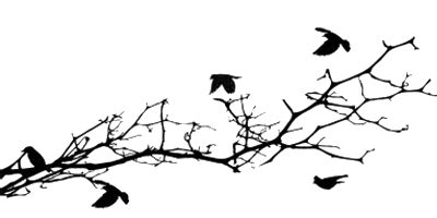 Blossom Tree Wall Stickers image tumblr static 14474343 tree silhouette with bird