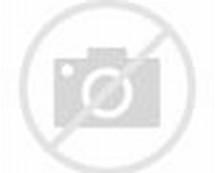 Beautiful Starry Night Sky Moon