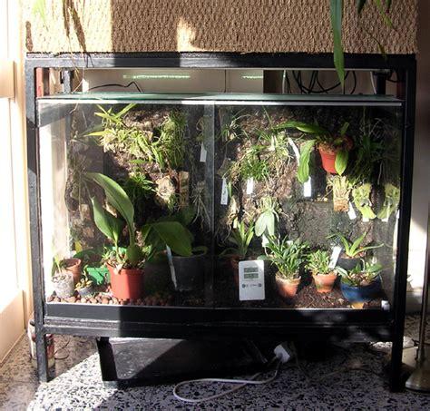 Humidité Dans Une Chambre 3217 by Mur A Epiphytes Et Orchidarium De Etienne
