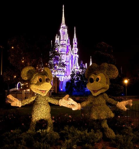 christmas castle lights walt disney world pinterest