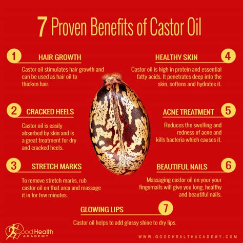 uses and applications for castor oil benefits of castor castor oil for stretch marks how does it work