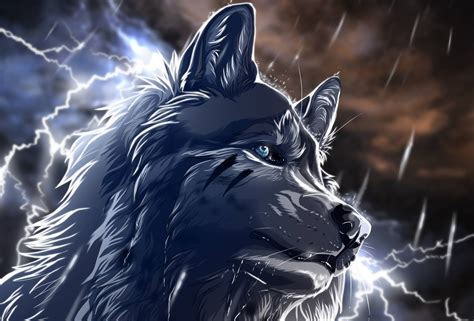 A Anime Wolf by Anime Wolf Wallpapers Wallpaper Cave
