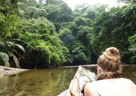 Borneo Indonesia kalimantan tours wildlife safari orangutan trips