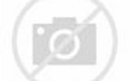Free Desktop Backgrounds Wood