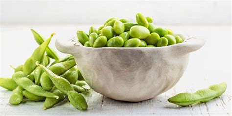 can dogs edamame can dogs eat edamame food genius
