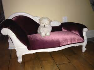 Luxury fancyt designer dog beds
