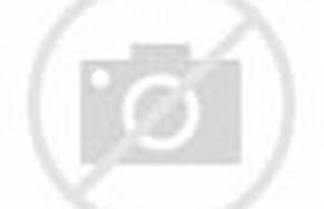 Pusat Toko Baju Tanah Abang: Kebaya Pernikahan Tsania Marwah ...