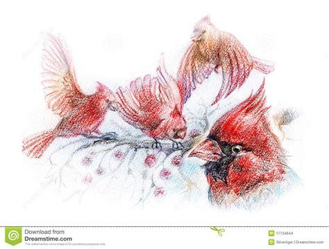 desenho de p 225 ssaros vermelhos em filiais