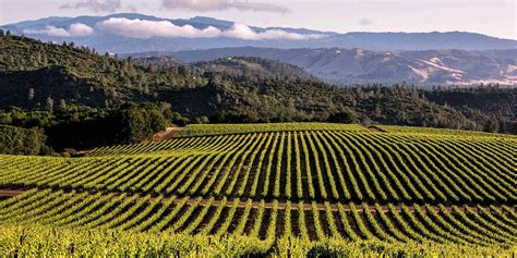 best wines california amazing wine country destinations visit california