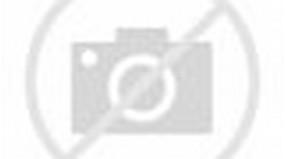 Foto Indah Bunga Sakura Mekar Di Jepang Foto Foto Pemandangan Bunga