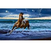 Download Image Beautiful Landscape With Horses PC Android IPhone And