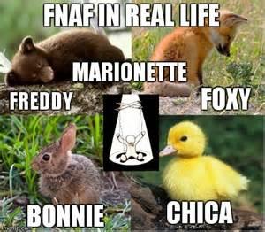 Real life freddy f naf