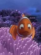 Animated Nemo Fish
