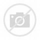 Estrellas De Mar Para Colorear