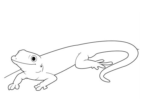 Coloring Pages Gecko Lizard Printable For Kids Adults Gecko Insect Coloring Page
