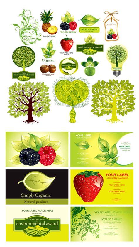 b q fruit plants vector fruit graphichive net