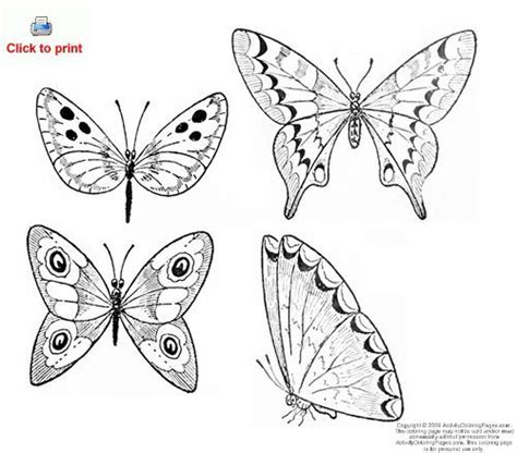butterfly coloring pages google search butterflies and
