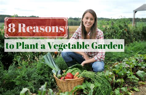 The Benefits Of Growing Your Own Food Sparkpeople Benefits Of Vegetable Gardening