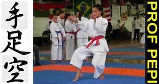karate do,kung fu,londrina,curitiba,blumenau.joinville,florianópolis ...