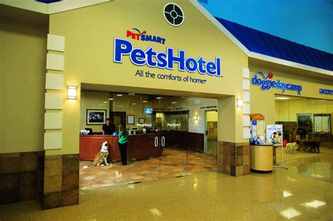 petsmart hotel pet friendly playlists petshotel playlist