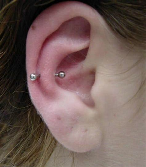 tattoo and body piercing ear piercing choices designs piercing