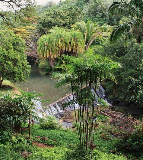 Allerton Gardens by Allerton And Mcbryde Gardens Nuvo