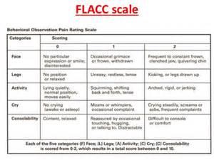 vas skala schmerz flacc scale search nursing stuff