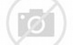 Gandhi India Independence Day