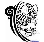 How To Draw A Tiger Tattoo Design Step 8
