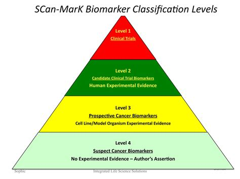 what level of evidence is a cross sectional study levels of evidence pyramid quotes