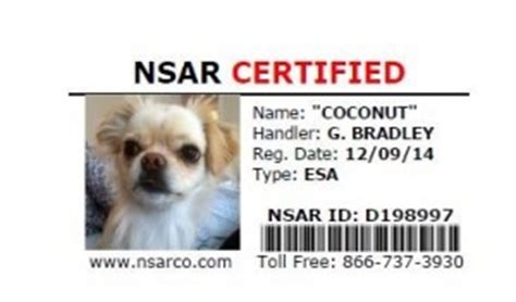 comfort animal certification coconut certified as emotional support animal esa