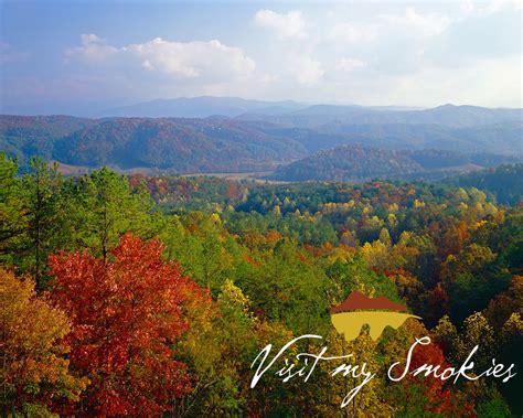 smoky mountains fall colors smoky mountain fall colors 2012