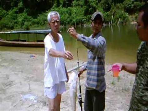 Pancing Malaysia pancing malaysia freshwater fishing fishing at lubuk