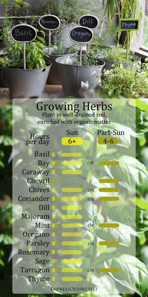 herb growing chart growing herbs in sun and part shade empress of dirt