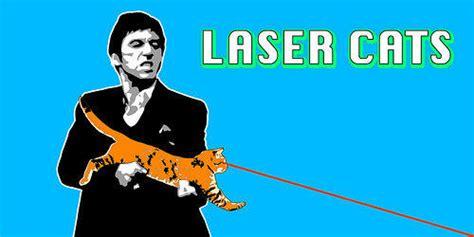 Laser Cat Meme - cat gun know your meme