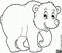 Dibujos de Animales polares para colorear