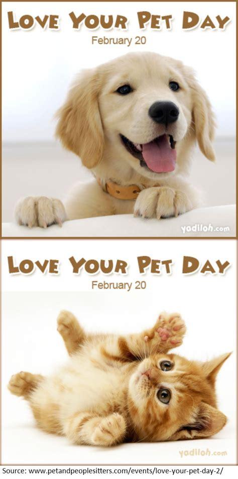 happy love  pet dayhave  heard