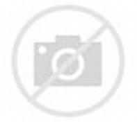 Gambar dan Ukuran Lapangan Bola Voli Lengkap