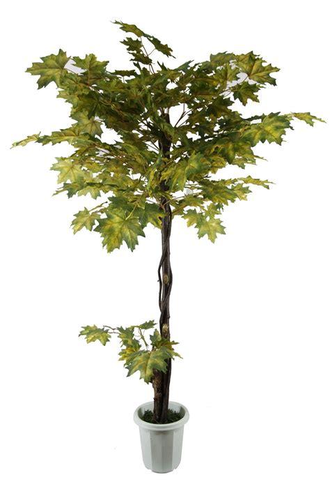 artificial trees canada china artificial canada maple tree jtlb 0056 china