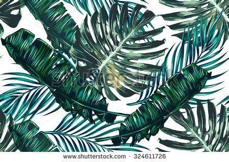 Owl Fall Leaf Iphone All Hp tropical palm leaves jungle leaves seamless vector floral