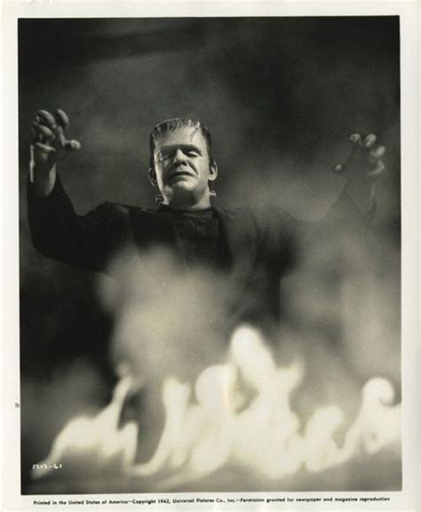 themes of beauty in frankenstein 1000 images about vintage sci fi films on pinterest the