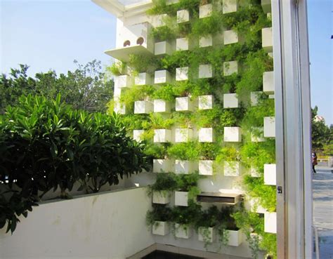 Green Terrace Garden