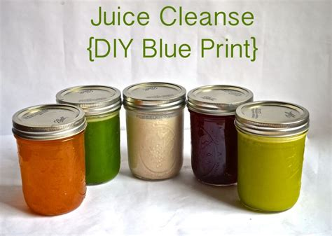 Home Detox Printable by Diy Blue Print Juice Cleanse Juice Cleanse Home And Juice
