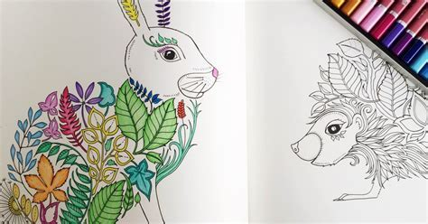 Trendwatch Adult Colouring Books The Register