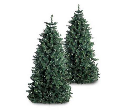 wwwqvccomprelit christmas trees 6 1 2 foot artificial pre lit tree qvc
