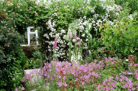flowers traditionally  cottage garden plants