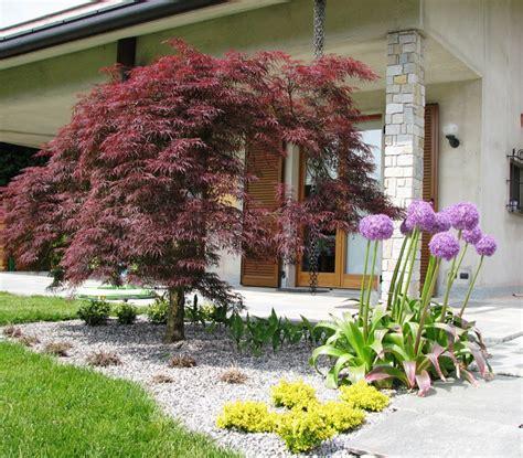 realizzazione aiuole per giardino realizzazione giardini e aiuole fumagalli giulio
