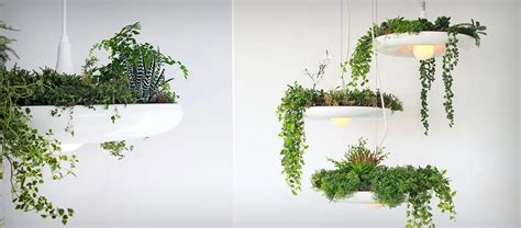 plant light grow plants in the babylon light jebiga design lifestyle