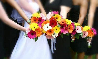 linguaggio dei fiori gerbera nel linguaggio dei fiori la gerbera assume diversi